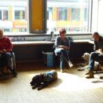 Atelier chiens d'assistance